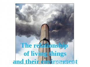 The relationship of living thingsand their environment