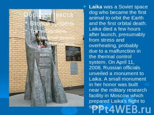 Laika was a Soviet space dog who became the first animal to orbit the Earth and