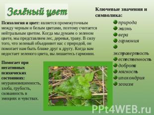 Психология-зеленый цвет