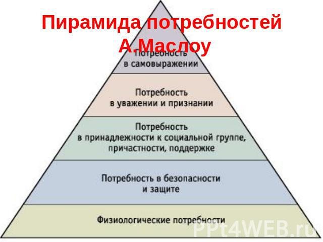 ecommerce research paper pyramid scheme