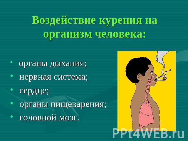 Влияние курения на желчный