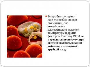 Вирус быстро теряет жизнеспособность при высыхании, под воздействием ультрафиоле