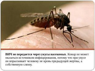 ВИЧ не передается через укусы насекомых. Комар не может оказаться источником инф