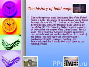 The history of bald eagle The bald eagle was made the national bird of the Unite