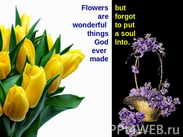 Flowers are wonderful thingsGodever madebut forgot to put a soul Into.