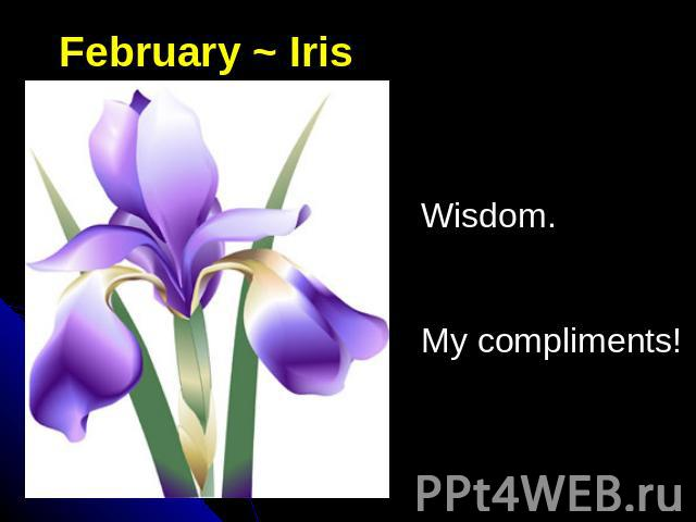 February ~ IrisWisdom.My compliments!