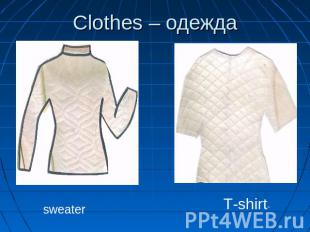 Сlothes – одежда sweaterT-shirt-