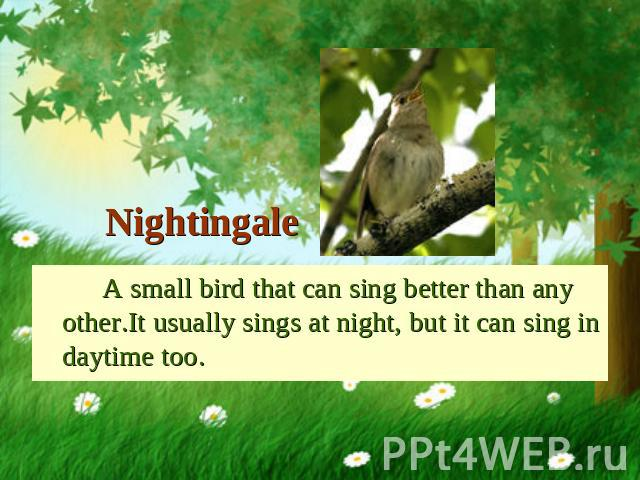 Nightingale A small bird that can sing better than any other.It usually sings at night, but it can sing in daytime too.