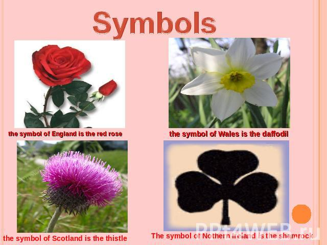 Symbolsthe symbol of England is the red rosethe symbol of Wales is the daffodilthe symbol of Scotland is the thistleThe symbol of Nothern Ireland is the shamrock