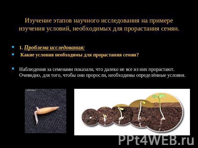 эксперимент условия прорастания семян