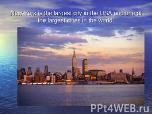 New-York is the largest city in the USA and one of the largest cities in the wor