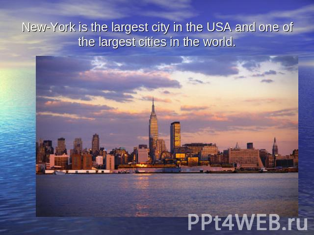 New-York is the largest city in the USA and one of the largest cities in the world.