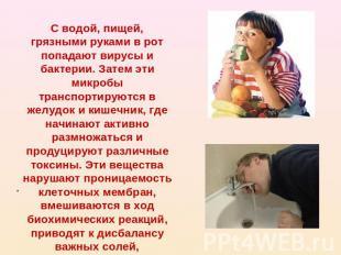 С водой, пищей, грязными руками в рот попадают вирусы и бактерии. Затем эти микр