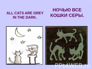 ALL CATS ARE GREY IN THE DARK.