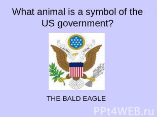 What animal is a symbol of the US government?