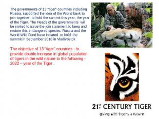 "The governments of 13 ""tiger"" countries including Russia, supported the idea of"