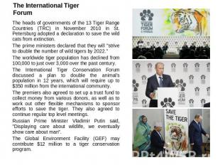 The International Tiger Forum The heads of governments of the 13 Tiger Range Cou