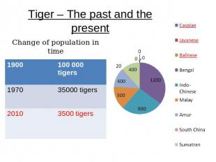 Tiger – The past and the present Change of population in time
