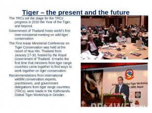 Tiger – the present and the future The TRCs set the stage for the TRCs' progress