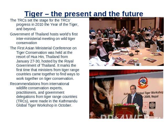 Tiger – the present and the future The TRCs set the stage for the TRCs' progress in 2010 the Year of the Tiger, and beyond.Government of Thailand hosts world's first inter-ministerial meeting on wild tiger conservation The First Asian Ministerial Co…