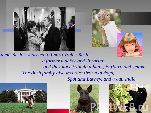 President Bush is married to Laura Welch Bush, a former teacher and librarian, and they have twin daughters, Barbara and Jenna. The Bush family also includes their two dogs, Spot and Barney, and a cat, India.