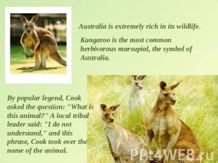 Australia is extremely rich in its wildlife. Kangaroo is the most common herbivo