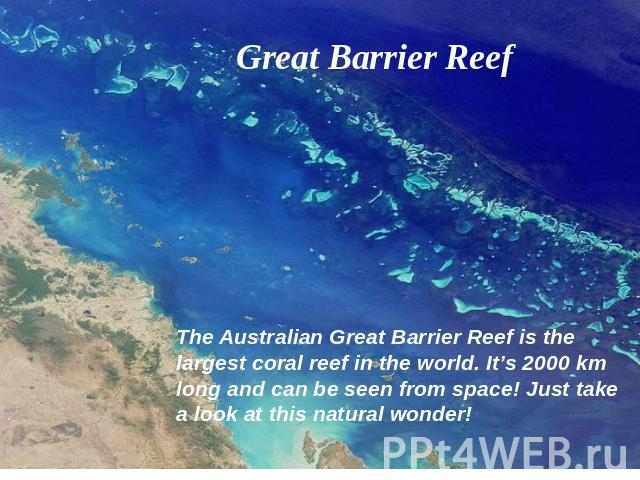 Great Barrier Reef The Australian Great Barrier Reef is the largest coral reef in the world. It's 2000 km long and can be seen from space! Just take a look at this natural wonder!