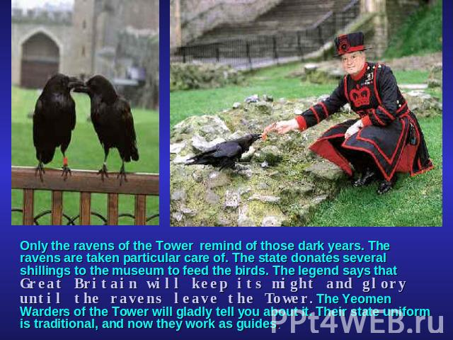 Only the ravens of the Tower remind of those dark years. The ravens are taken particular care of. The state donates several shillings to the museum to feed the birds. The legend says that Great Britain will keep its might and glory until the ravens …