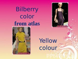 Bilberry colorfrom atlas Yellow colour