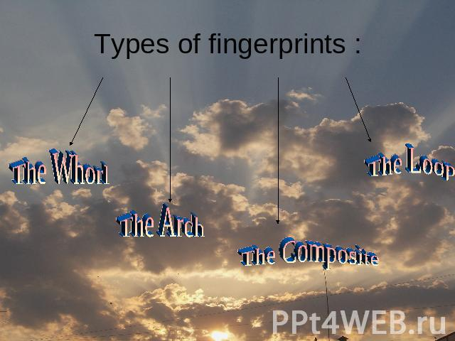 Types of fingerprints : The Whorl The Arch The Composite The Loop