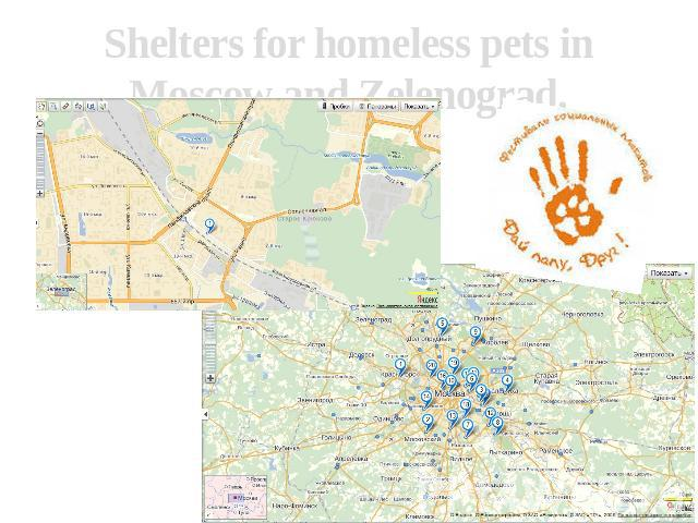 Shelters for homeless pets in Moscow and Zelenograd.