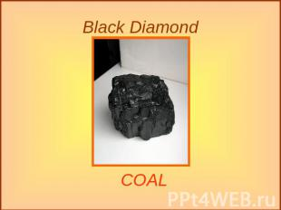 Black Diamond COAL