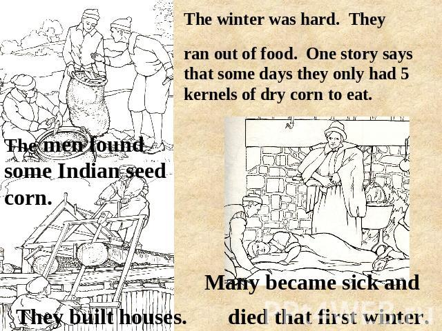 ran out of food. One story says that some days they only had 5 kernels of dry corn to eat. The men found some Indian seed corn. died that first winter. They built houses. Many became sick and