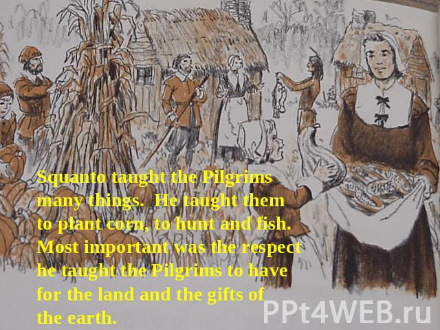 Squanto taught the Pilgrims many things. He taught them to plant corn, to hunt and fish. Most important was the respect he taught the Pilgrims to have for the land and the gifts of the earth.