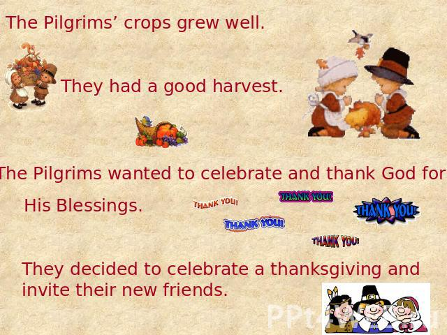 The Pilgrims' crops grew well. They had a good harvest. The Pilgrims wanted to celebrate and thank God for His Blessings. They decided to celebrate a thanksgiving and invite their new friends.