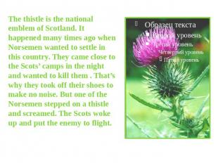 The thistle is the national emblem of Scotland. It happened many times ago when