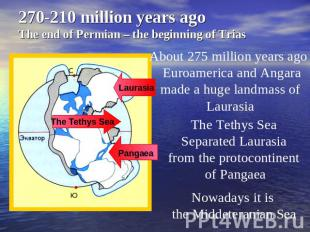 270-210 million years ago The end of Permian – the beginning of Trias About 275
