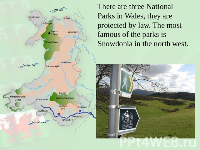 There are three National Parks in Wales, they are protected by law. The most famous of the parks is Snowdonia in the north west.