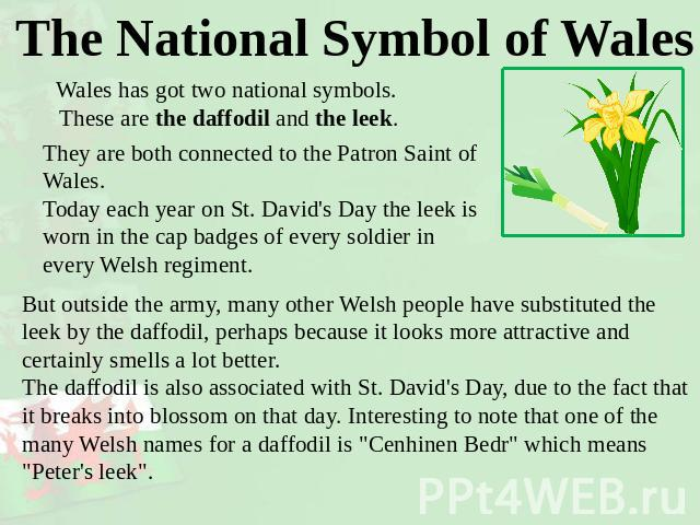 The National Symbol of Wales Wales has got two national symbols. These are the daffodil and the leek. They are both connected to the Patron Saint of Wales.Today each year on St. David's Day the leek is worn in the cap badges of every soldier in ever…