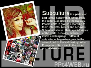 Subculture is a particular part of the society that differs from the culture, ad