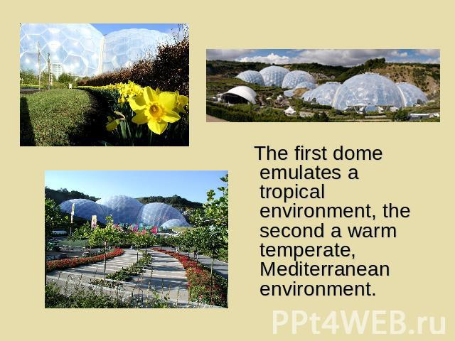 The first dome emulates a tropical environment, the second a warm temperate, Mediterranean environment.