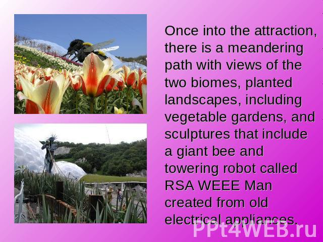 Once into the attraction, there is a meandering path with views of the two biomes, planted landscapes, including vegetable gardens, and sculptures that include a giant bee and towering robot called RSA WEEE Man created from old electrical appliances.