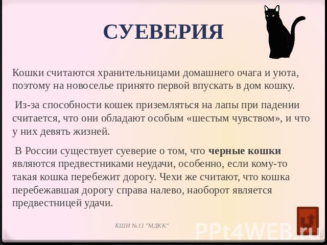как смысл появление черной кошки в доме приметы горячая