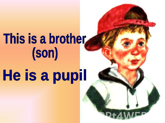 This is a brother (son) He is a pupil