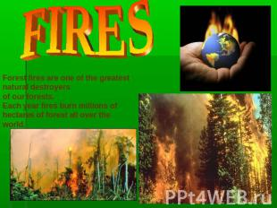 FIRES Forest fires are one of the greatest natural destroyers of our forests.Eac