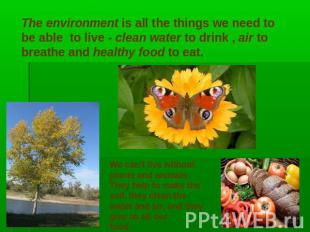 The environment is all the things we need to be able to live - clean water to dr