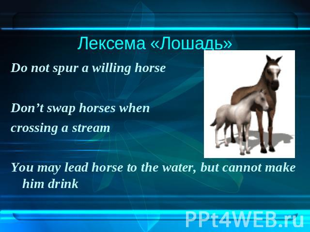 Лексема «Лошадь»Do not spur a willing horse Don't swap horses when crossing a stream You may lead horse to the water, but cannot make him drink