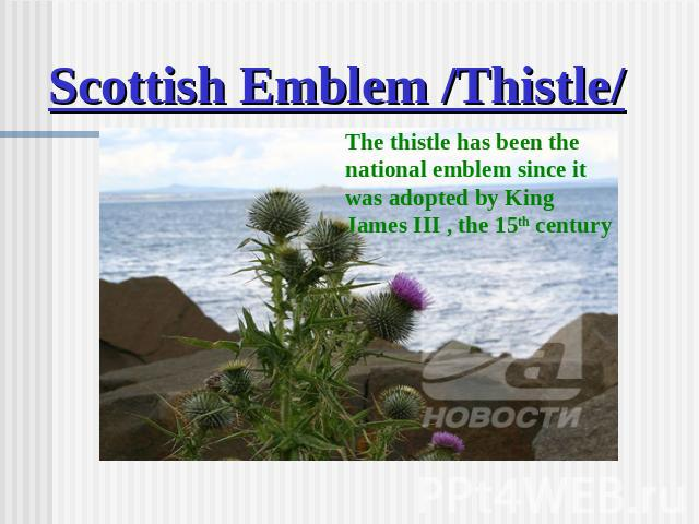 Scottish Emblem /Thistle/ The thistle has been the national emblem since it was adopted by King James III , the 15th century