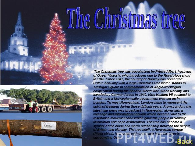 The Christmas tree The Christmas tree was popularized by Prince Albert, husband of Queen Victoria, who introduced one to the Royal Household in 1840. Since 1947, the country of Norway has presented Britain annually with a large Christmas tree which …