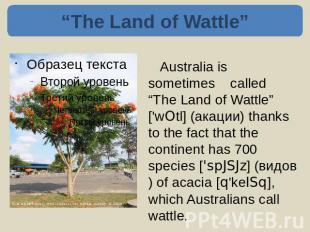 """The Land of Wattle"" Australia is sometimes called ""The Land of Wattle"" ['wOtl]"